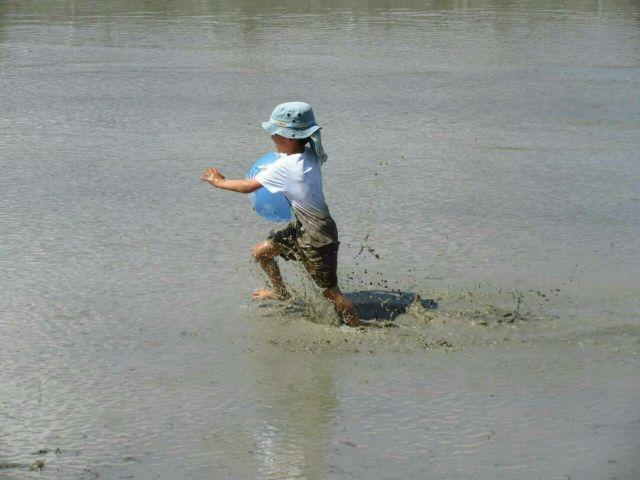 垂水区舞子のボーイスカウト神戸第2団 田植えと泥んこ運動会