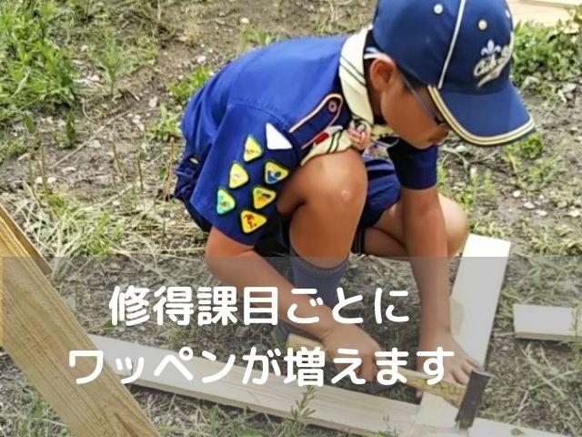 垂水舞子のボーイスカウト神戸第2団 カブスカウト 修得課目ごとにワッペンが増えます